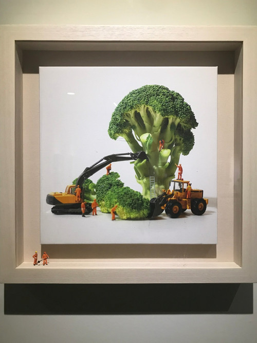 Th_img_2640broccotree