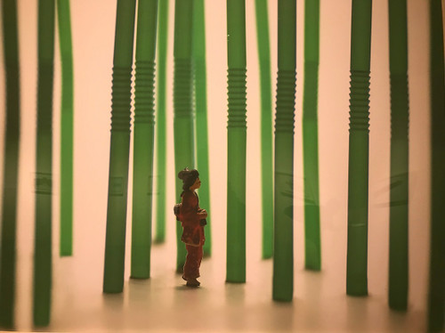 Th_img_2966bamboo_forest