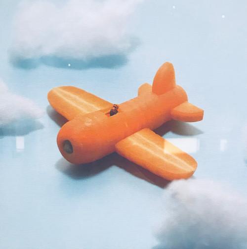Th_img_3022carrots_pilot